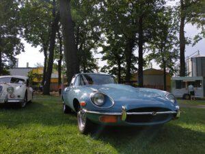 Grafika: Modrý Jaguar E-Type zaparkovaný pod stromy v Bohumíně.